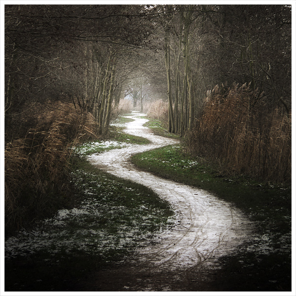 the_white_path