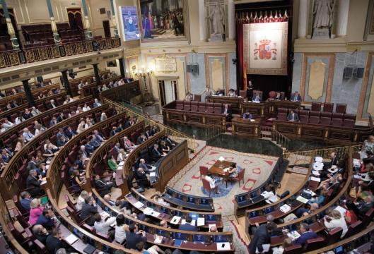 sesion_plenaria congreso.es