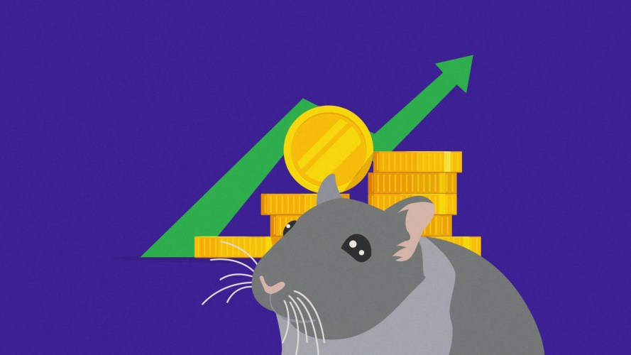 Crypto trading hamster Mr. Goxx is up nearly 30% in three months, while Cathie Wood's ARK Innovation fund has managed less than 5%.