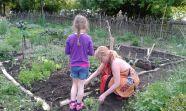Jolanta und Mira beim anpflanzen