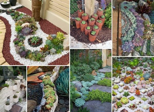 ideas creating amazing garden