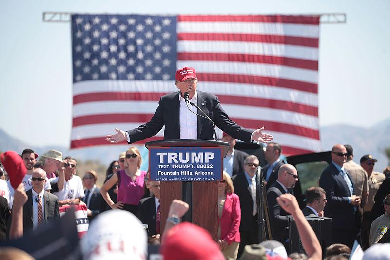 The Trump Enigma