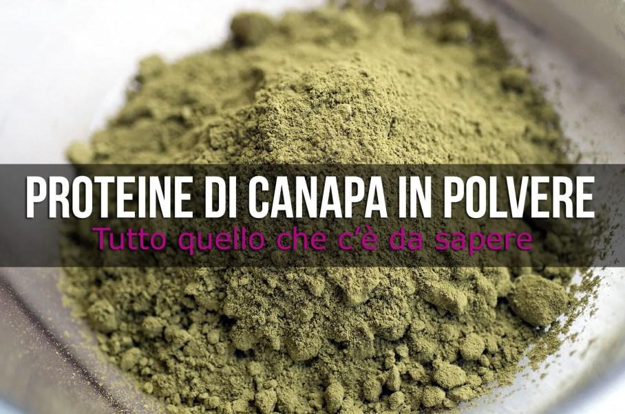 Proteine della Canapa in Polvere