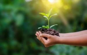 Stile di vita sostenibile