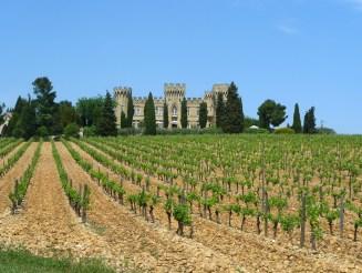 Château_des_Fines-Roches Chateauneuf du Pape Luxury close Avignon