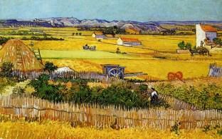 Van Gogh Arles 7 April 31 August