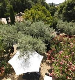 Mas des Carrasins Hotel St Remy de Provence8