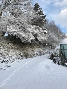 A snowy day on the farm!