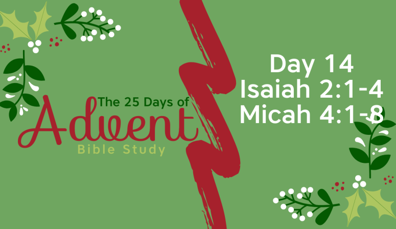 25 Days of Advent Bible Study Series {Day 14}