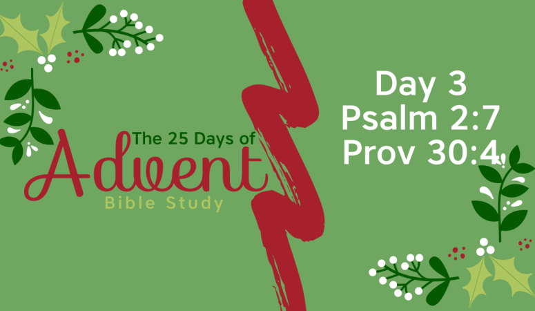 25 Days of Advent Bible Study Series {Day 3}