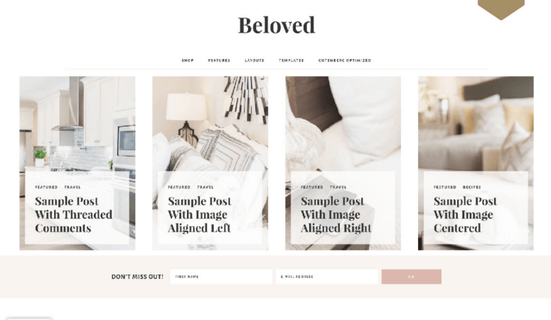 Beloved Theme Review – Restored 316 Themes