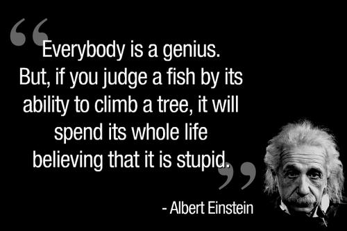 Albert Einstein Quotes Imagination Is More Important Than Knowledge Wallpaper Albert Einstein Everybody Is A Genius Jpulse Org