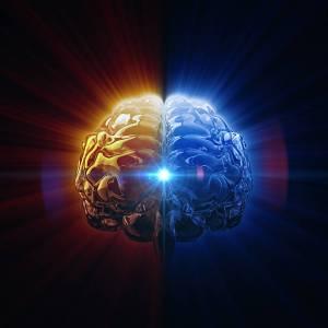 проверка на полиграфе головной мозг человека