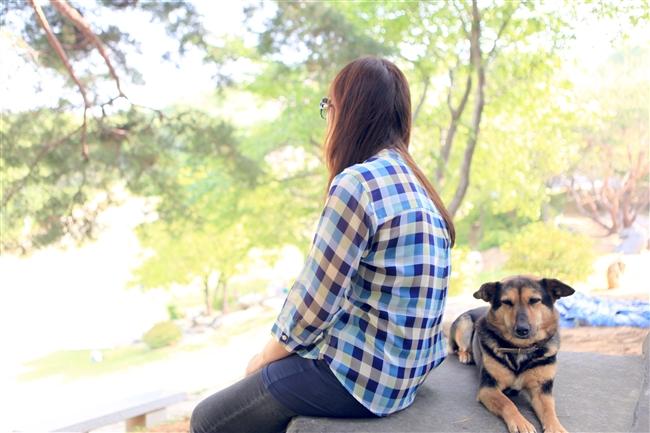 クォンちゃん(中国の屠殺場から救われた犬)@月明洞