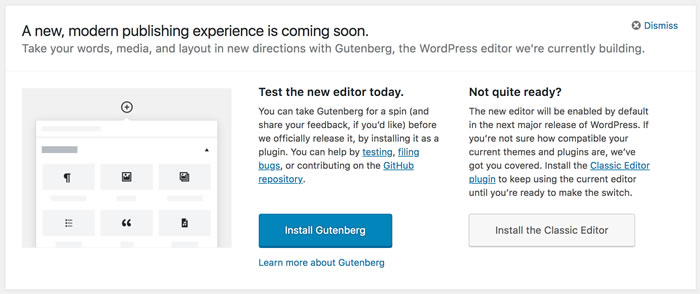Gutenberg WP Options