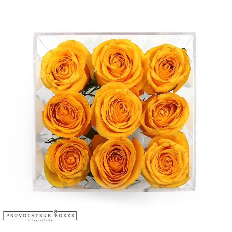 Rosas amarillas caja acrilica 9 tallos