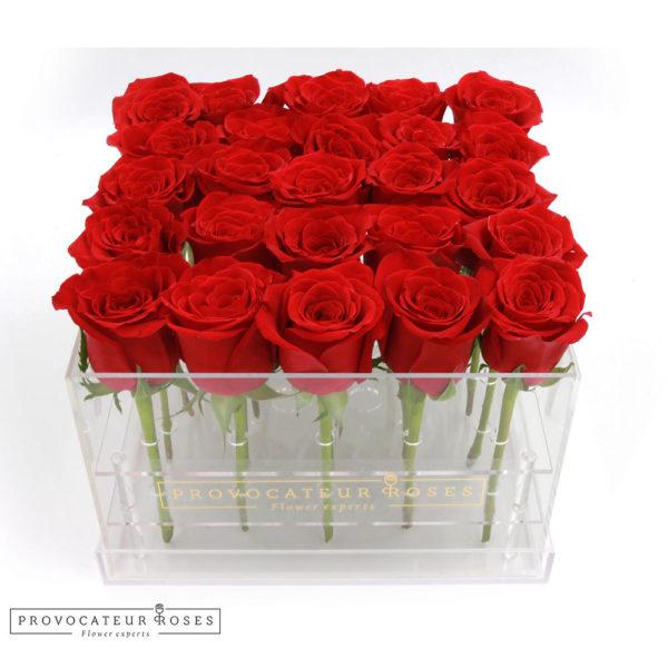 Rosas rojas caja acrilica 25 tallos