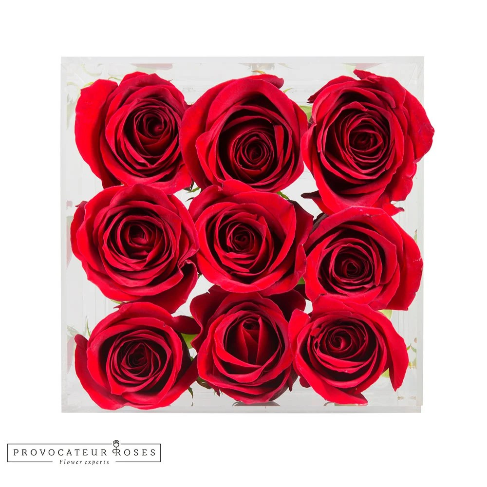 Rosas rojas caja acrilica 9 tallos