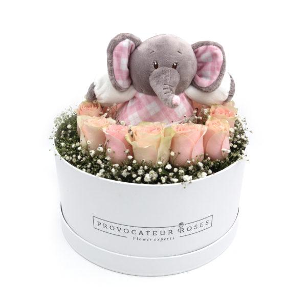 Caja 12 Rosas + Peluche Niña