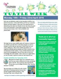 turtle-newsletter-image-april-2016