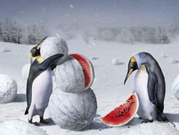 2 та 3 грудня в Західній Україні відбудеться ускладнення погодних умов