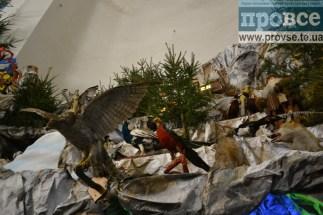 largest Christmas shopka Ternopil_0037_новый размер