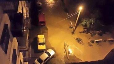 У столиці Грузії через паводок загинуло десять людей і втекли звірі із зоопарку