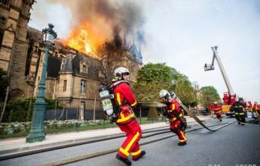 Собор Паризької Богоматері повністю не згорів
