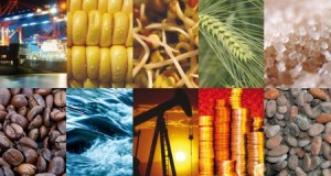 India has key role in world commodity market