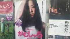 act-yasukawa-gamushara-3