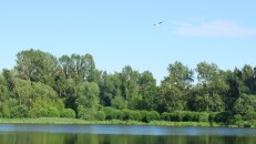 Parque en Moscú