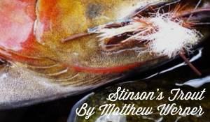 Stinson's Trout, by Matthew Werner