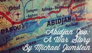 Abidjan Zoo: A War Story, by Michaël Zumstein