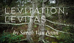 Levitation, Levitas, by Sarah Van Bonn