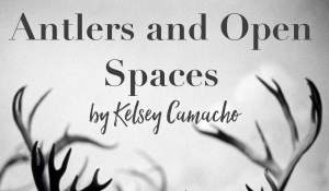 Antlers and Open Spaces, by Kelsey Camacho