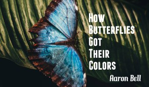 How Butterflies Got Their Colors, by Aaron Bell