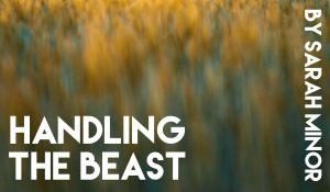 Handling the Beast, by Sarah Minor