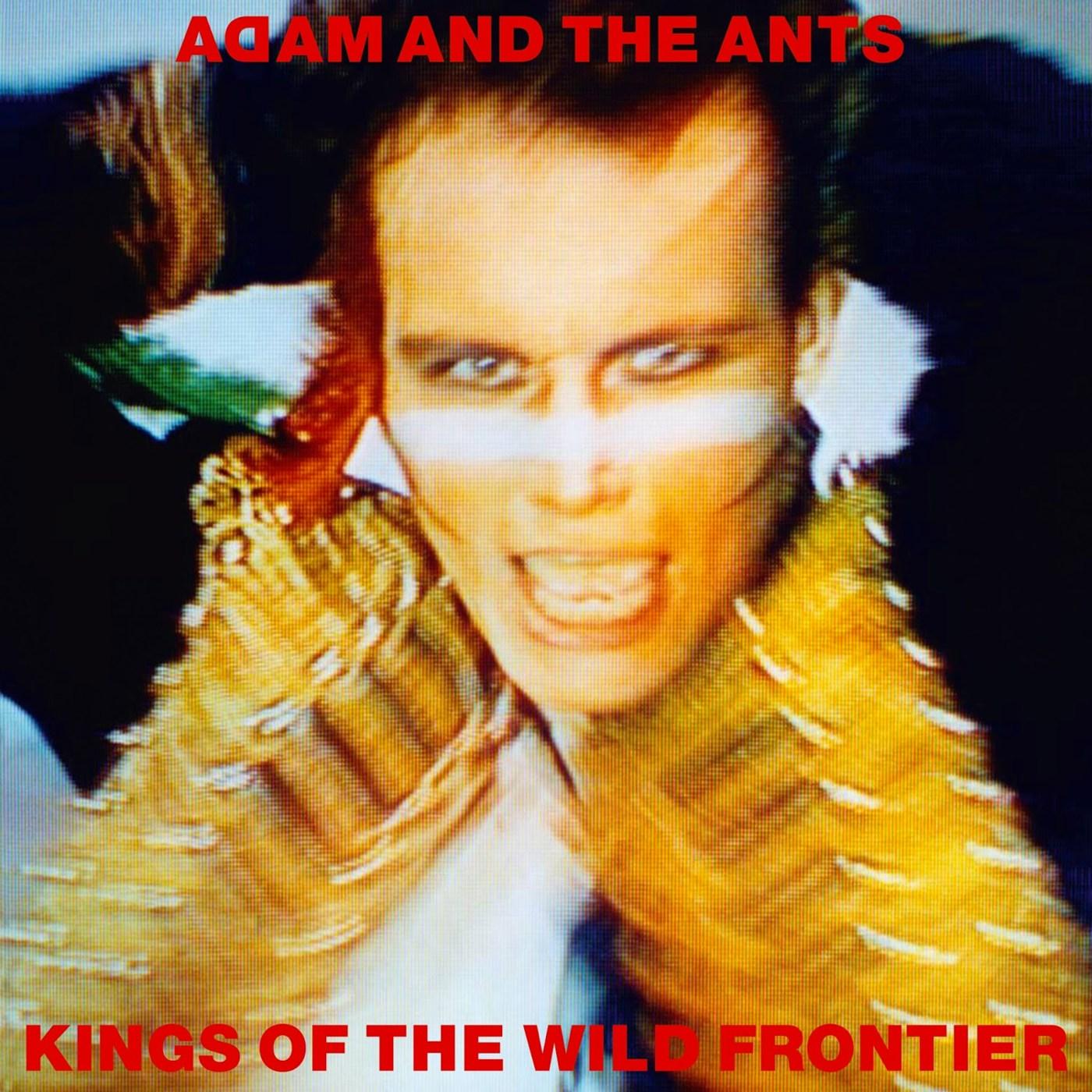 ant-kings