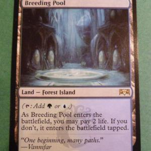 Breeding Pool – Rav Allegiance Holo Holo black core
