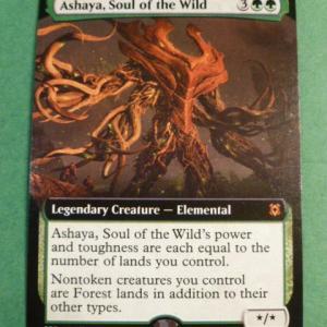 Ashaya, Soul of the Wild ZNE Holo black core