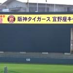 阪神 タイガース 2019 春季 キャンプ メンバー 振り分け 一軍 二軍