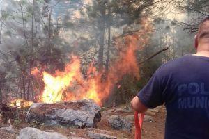 Más de 15 hectáreas afectadas por incendio en Petlacala, San Andrés Tenejapan