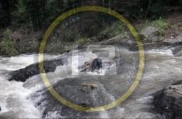 Rescatan cuerpo hombre atorado en el río Citlalapa, en Huatusco