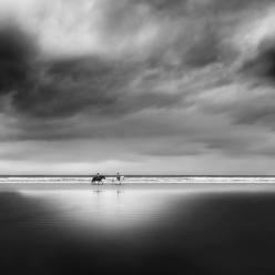 """""""La playa"""" - Miguel Cabezas - 170914"""