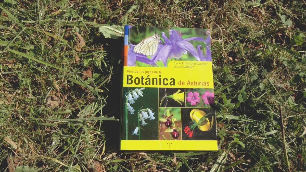 Guía-de-las-joyas-de-la-botánica-de-Asturias-8