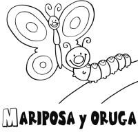 Dibujos de orugas - Imagui
