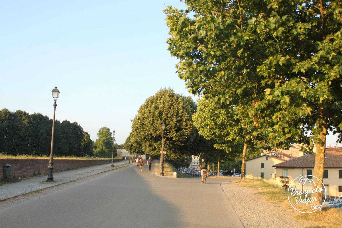 Caminando por Lucca