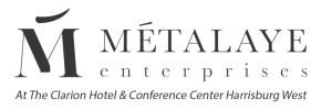 metalaye-logo-DK (1)