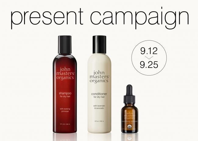 present campaign