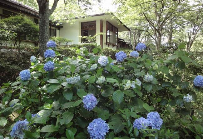 庭園「華清園」イメージ